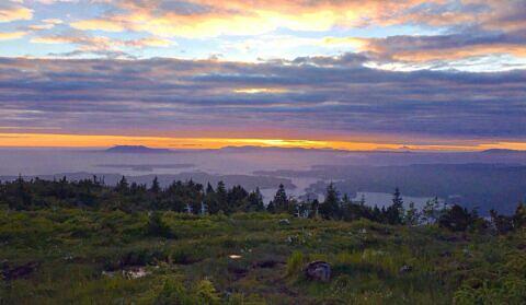 Mount Hays Sunset